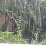 Recompensa Park regenseizoen
