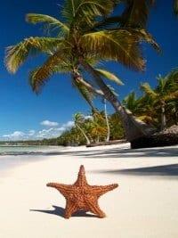 last minute curacao strandvakantie