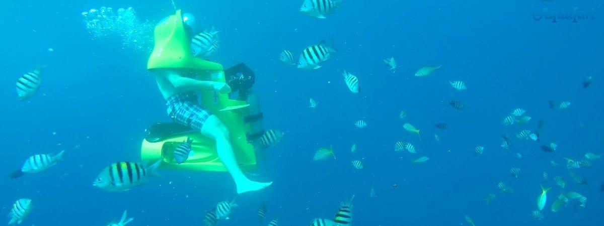 Aquafari curacao activiteiten onder water