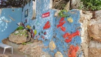 Dushi Walks Curaçao fotowandeling