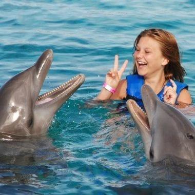 dolfijnen curacao