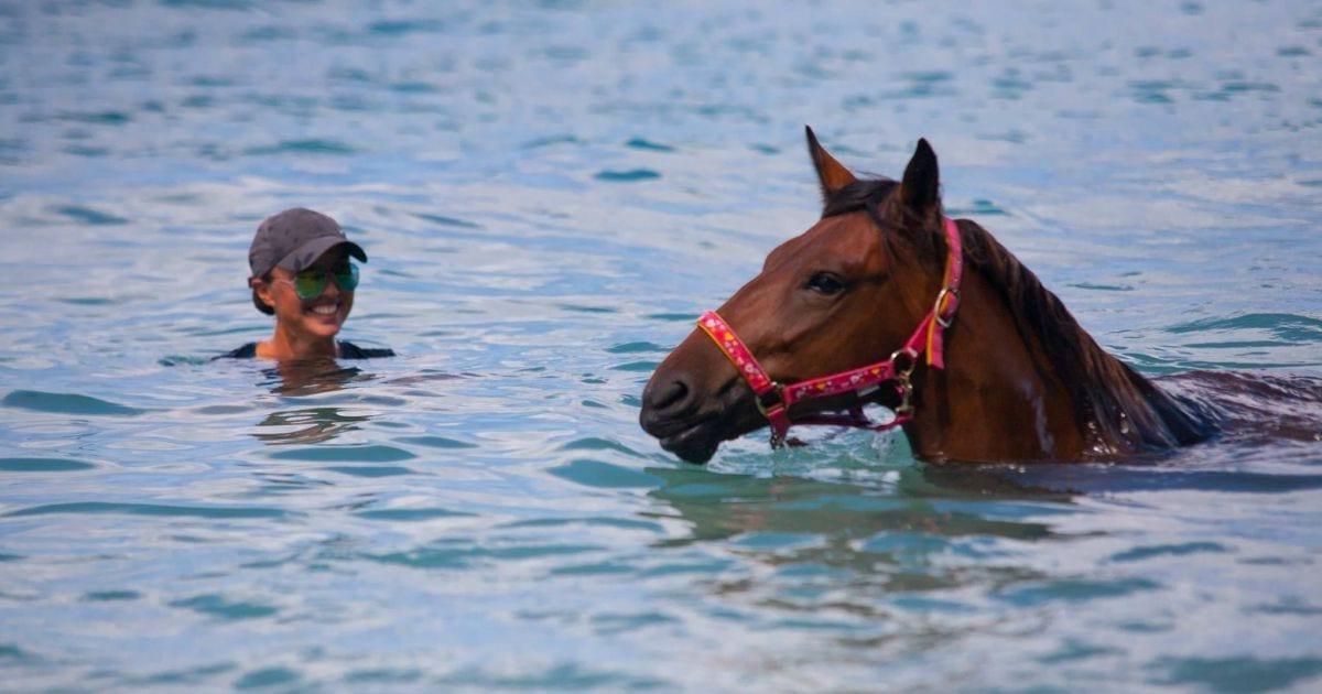 paardrijden op curacao