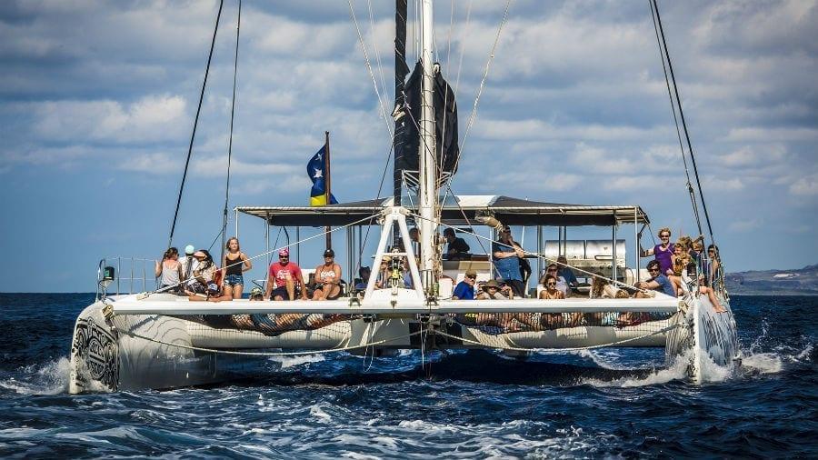 Catamaran BlueFinn