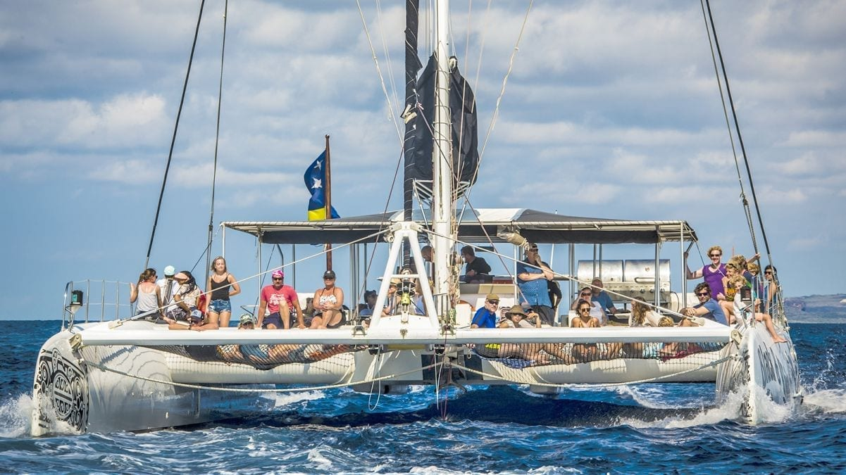 Catamaran BlueFinn Black White People