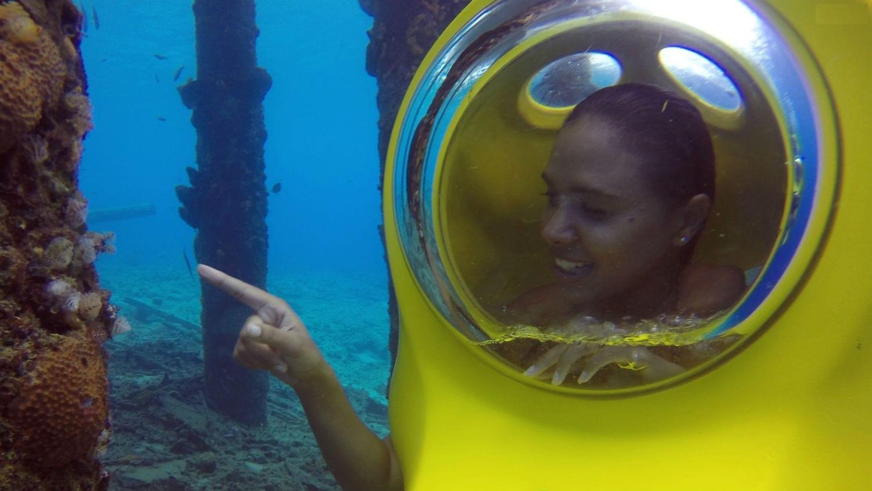 aquafari curacao: bekijk de onderwater-wereld!