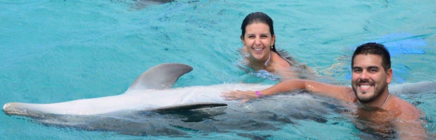 dolfijn-zwemmen-dolphin-swim-curacao