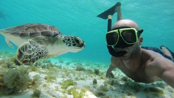 snorkel curacao dive center scuba lodge