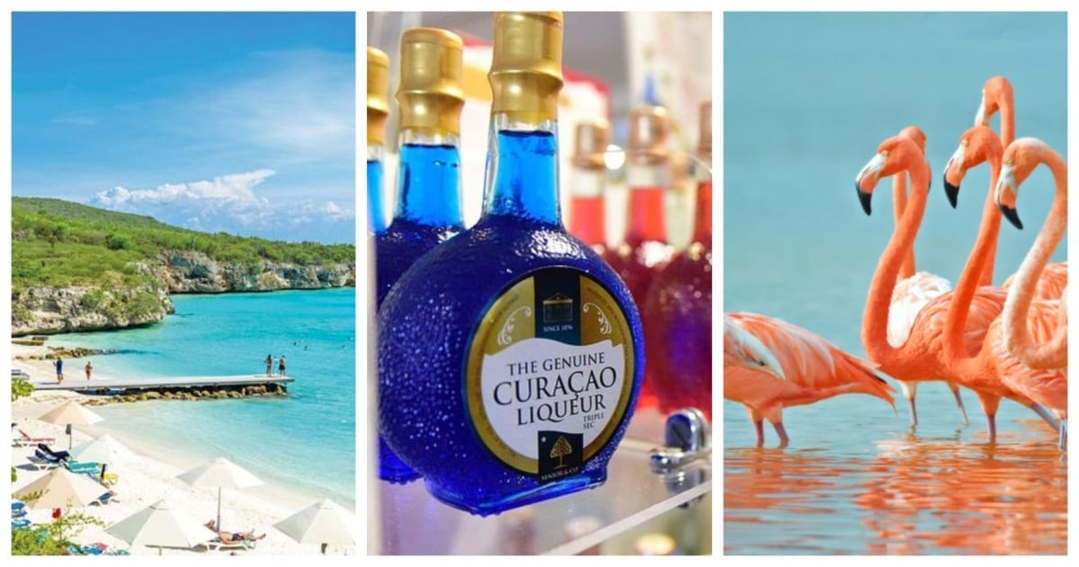 bustour curacao oost west discover curacao