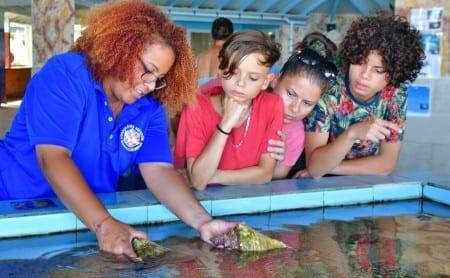 touch tanks bij sea aquarium curacao