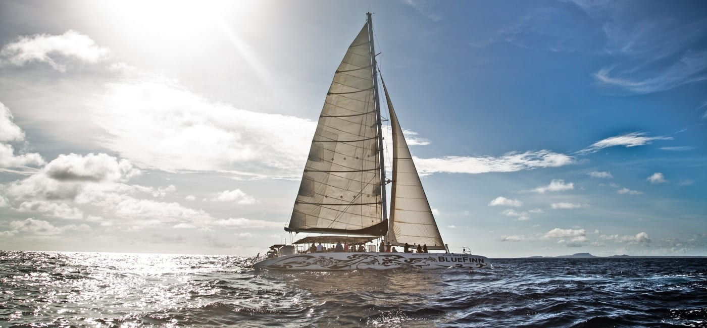sunset sail per catamaran black white bluefinn charters curacao