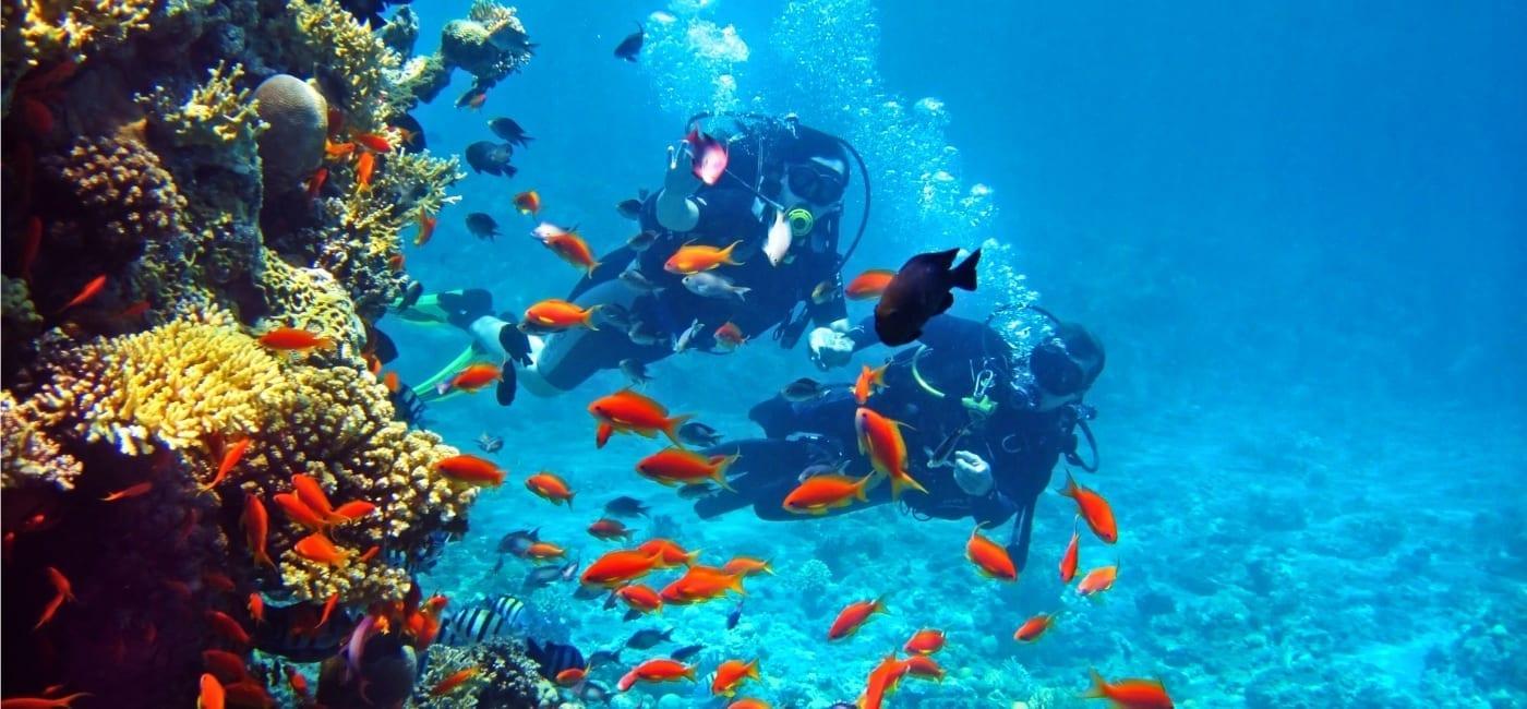 duiken en snorkelen op curacao