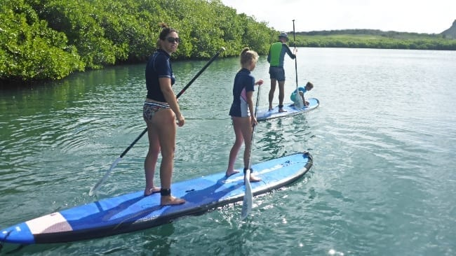 curacao stand-up paddling